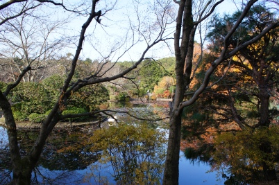 Pond at Ryoan-ji