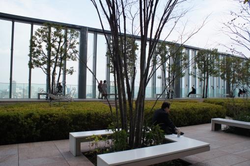 16th Floor Garden