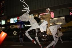 Reindeer Rider