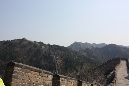 Mountain Line